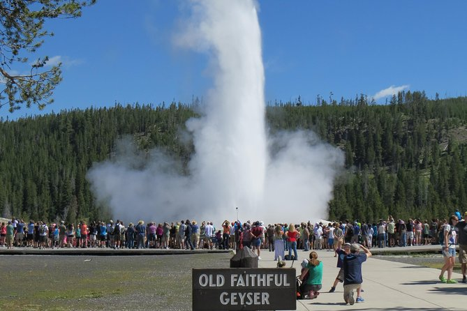 Yellowstone National Park PRIVATE Tour